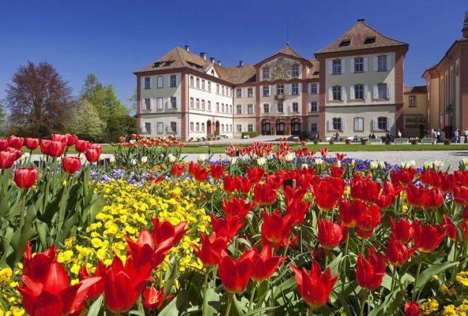 Tulpenblüte vor dem Schloss, Insel Mainau, Baden-Württemberg, Deutschland